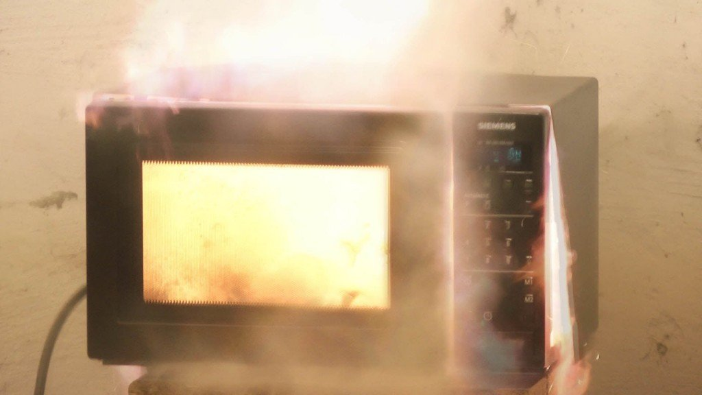 Metal Is Not The Reason For Sparking In A Microwave
