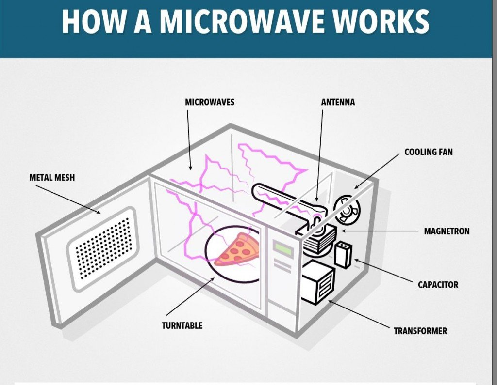 What Happens When You Put A Metallic Object In A Microwave