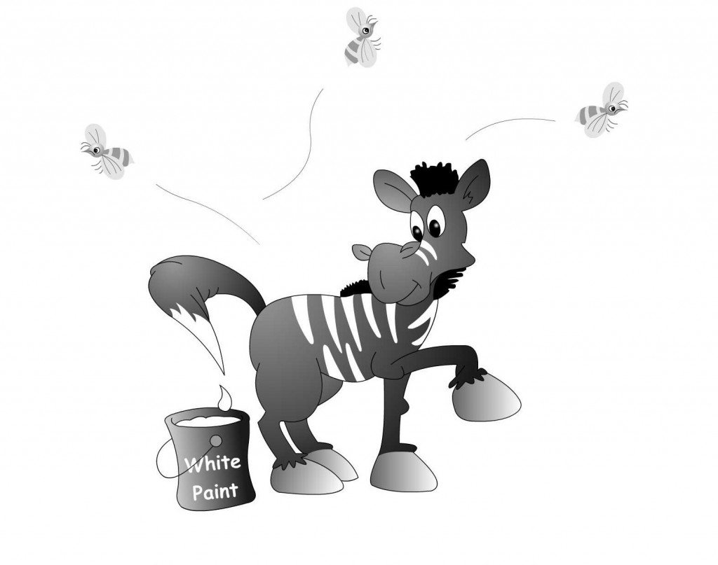 zebra stripes are zebras black with white stripes or white with