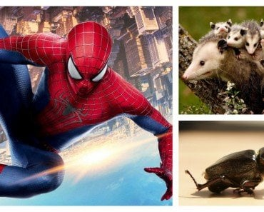 human, 5 Qualities of Animals That Humans are Trying to Emulate Artificially, Science ABC, Science ABC