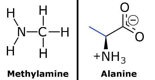 Methylamine & alanine