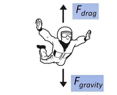 science behind skydiving