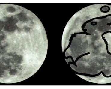 Pareidolia: Why Do We Think There's A Giant Rabbit On The Moon?