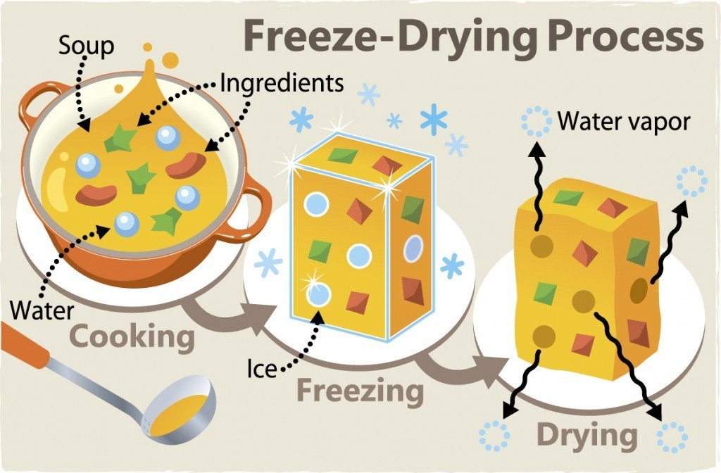 Freeze Drying How A Simple Process Keeps Foods And