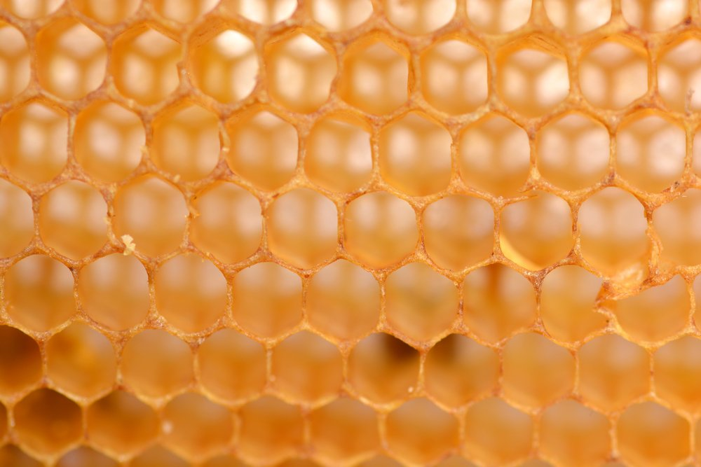 Why Do Bees Love Hexagons? » Science ABC