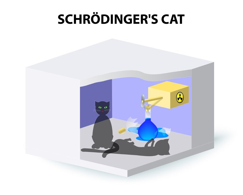 Is Schrdingers Cat Dead Or Alive Science Abc Geiger Counter Diagram He Proposed A Thought Experiment Where Trapped In Box With Flask Of Poison Beneath Hammer Attached To And Some Radioactive