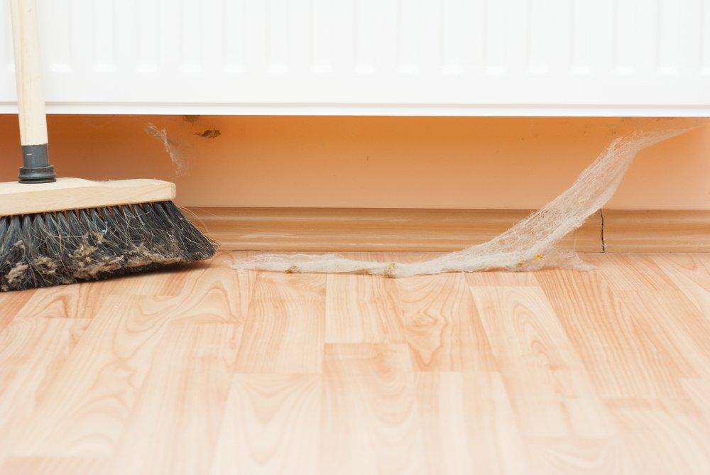 removing cobweb