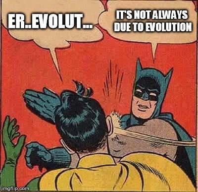 evolution meme
