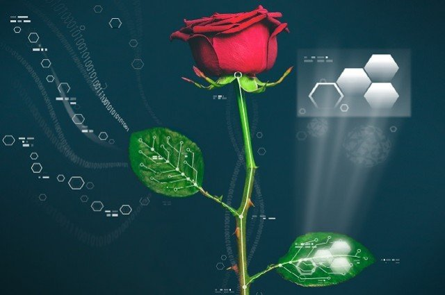 Robotic Plants: When Our Oxygen Suppliers are Infused With ...