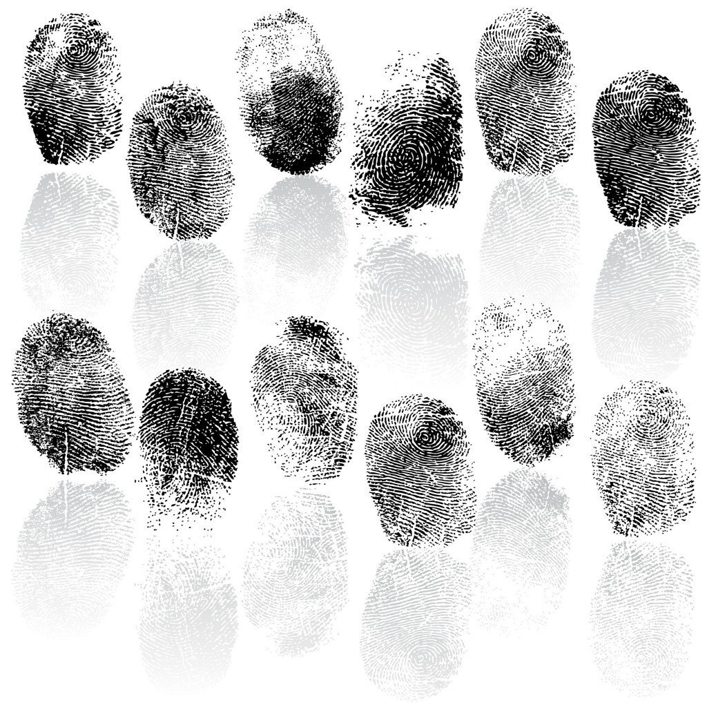 Why Do We Have Fingerprints And Why Are They Unique? » Science ABC