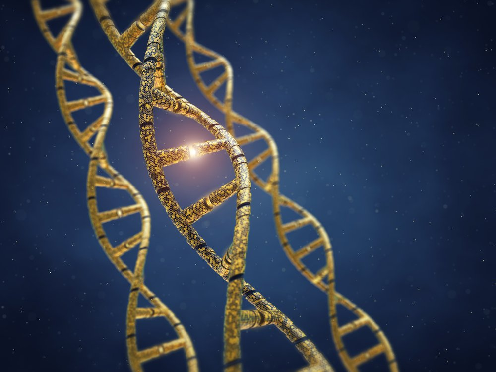 How Can Gene Programming Cure Duchenne Muscular Dystrophy ...