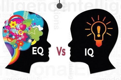 What S The Difference Between Eq And Iq 187 Science Abc