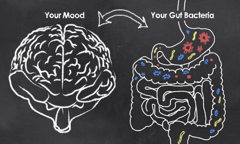 The Gut-Brain Connection (Photo Credit: T. L. Furrer / Fotolia)