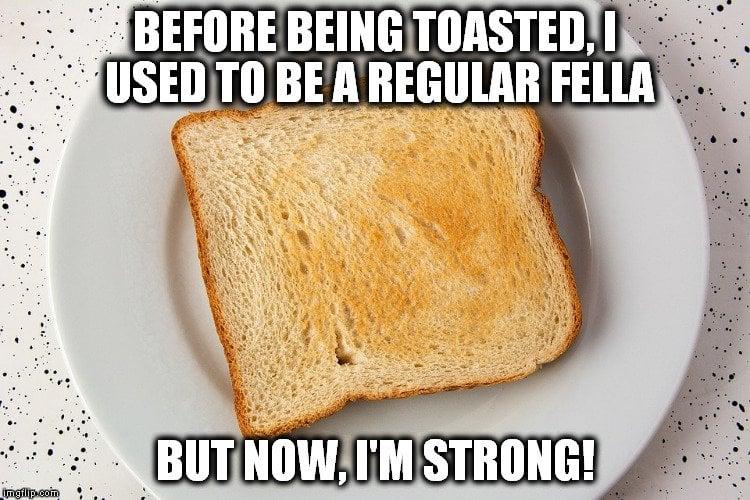 bread toasted meme 1
