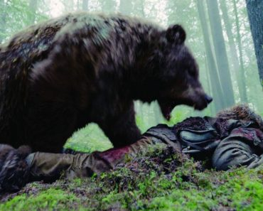 Revenant bear fight