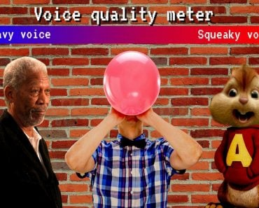 Voice quality meter