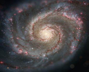 Spiral galaxy M51 (NGC 5194)