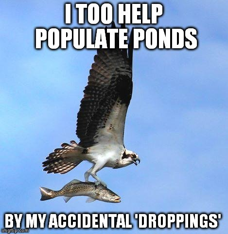 i-too-help-populate-ponds-meme