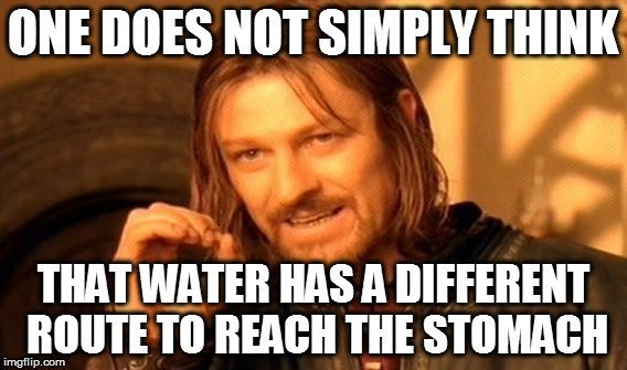 that-water-has-a-different-route-to-reach-the-stomach-meme