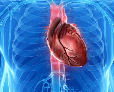 Why Is There No Heart Cancer?