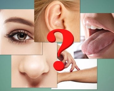 Do Humans Only Have Five Senses?