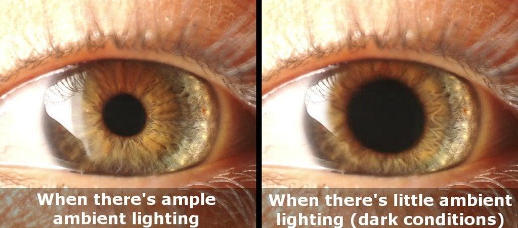 Pupil dilation