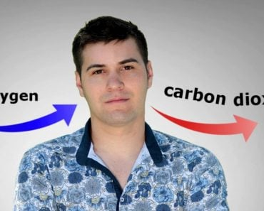 Why Does the Human Body Release Carbon Dioxide?