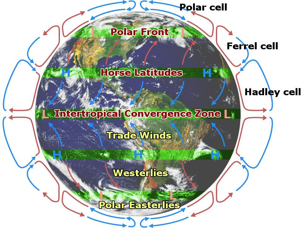 Why are tropical regions hotter than equatorial regions science abc atmospheric circulation gumiabroncs Image collections