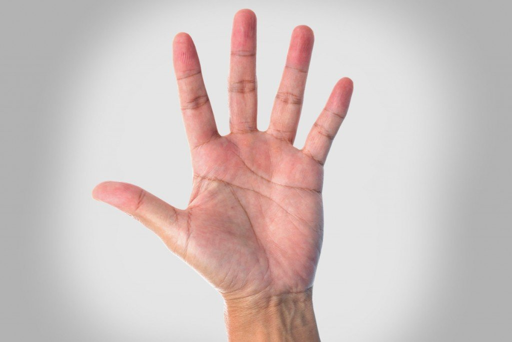 Why Do We Have Lines On Our Palms? » Science ABC