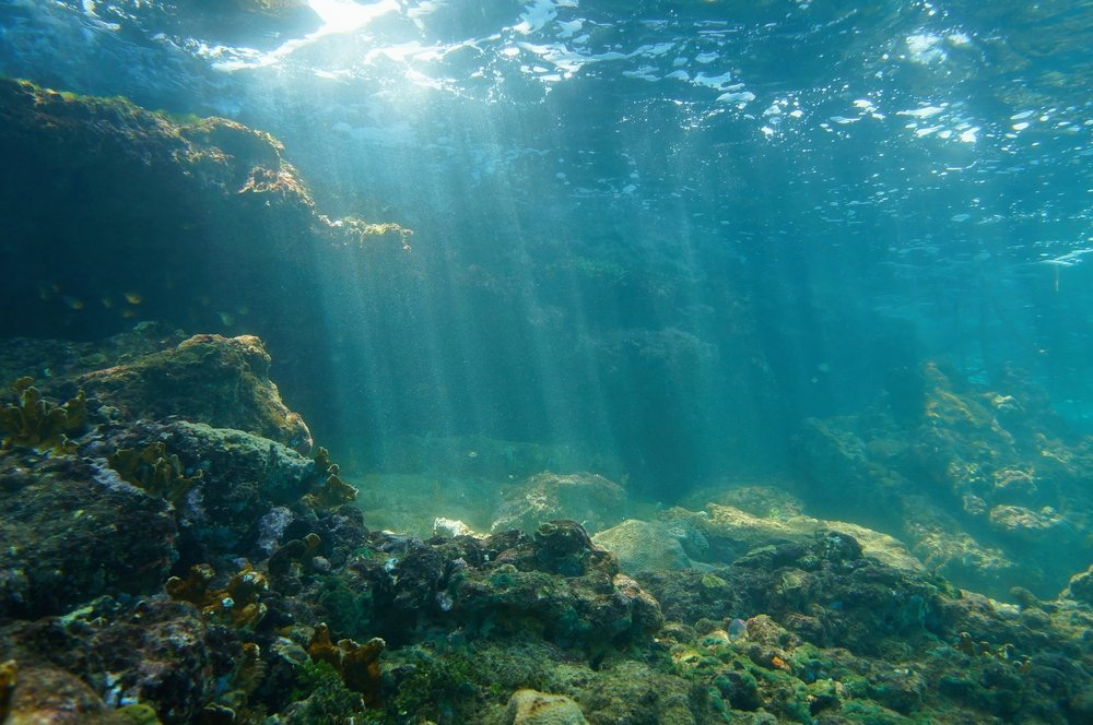 Underwater sunbeams through the water surface viewed from the seabed on a reef of the Caribbean sea, natural scene ocean (Seaphotoart)(s)
