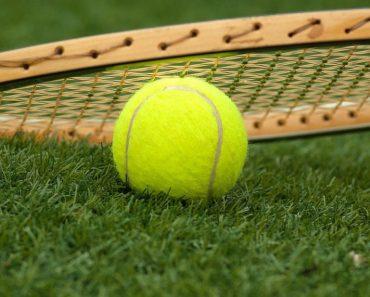 Tennis Ball Fuzz
