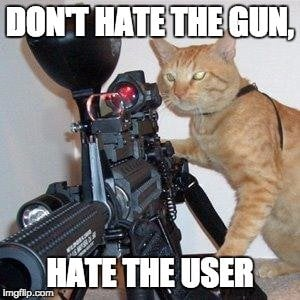 cat and gun meme