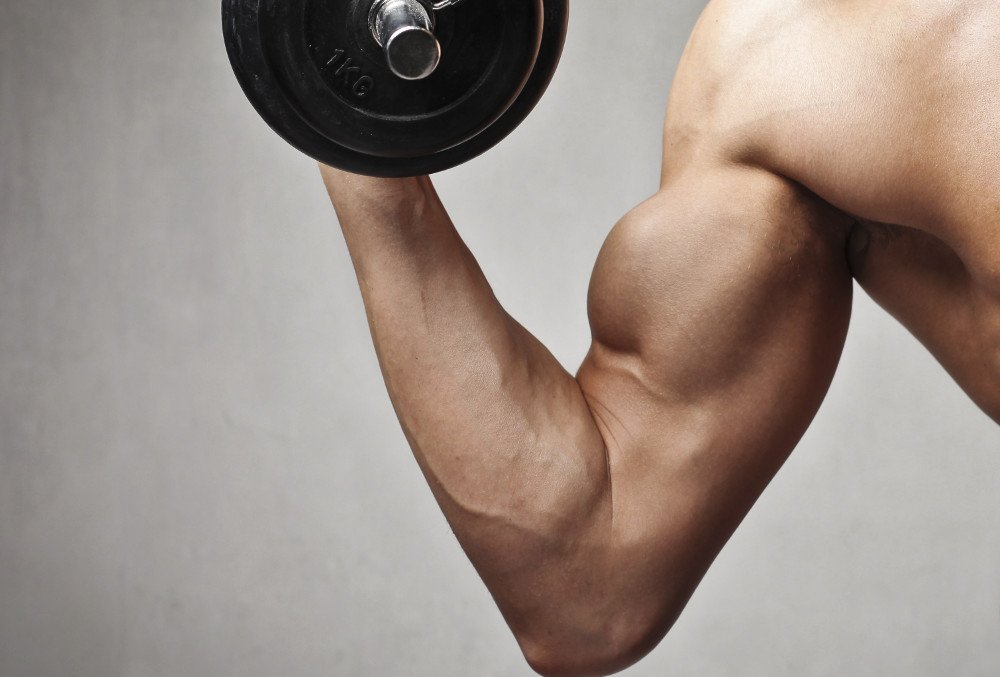 Muscle Fatigue: Why Do Muscles Shake When Lifting?