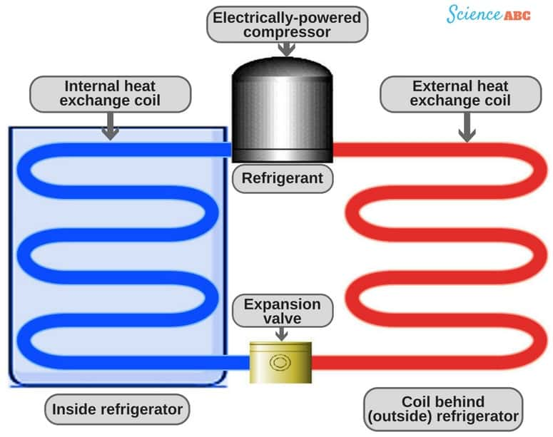 as the cool refrigerant gas flows through the chiller cabinet, it absorbs  the heat from the food items inside the fridge and vaporizes