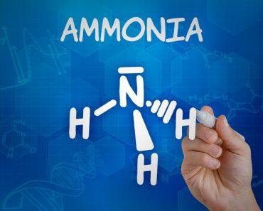 Is Ammonia an Acid or Base?
