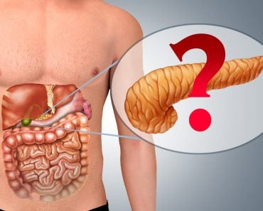 Pancreas in Human body