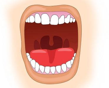 Uvula in open mouth vector