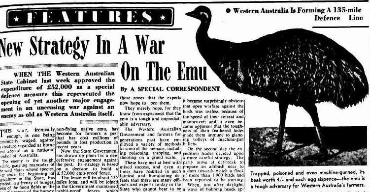 Emu war newspaper