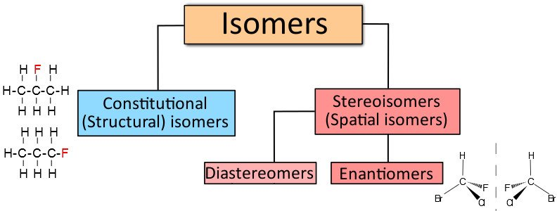 What's The Difference Between Epimers And Anomers? » Science ABC