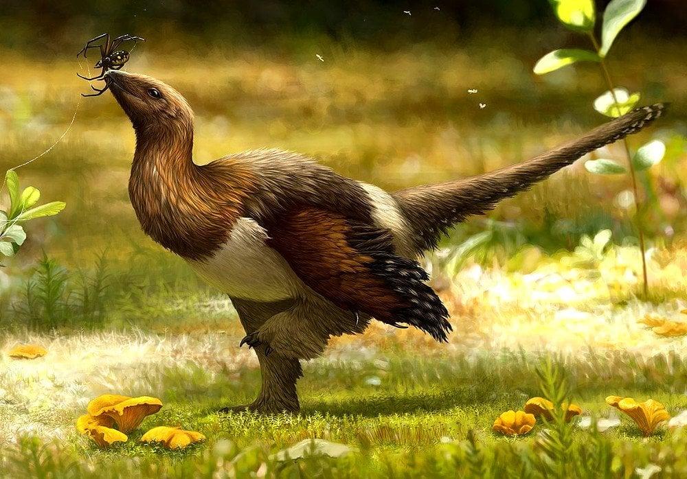 Are Birds Reptiles?