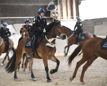 Mounted cops riding
