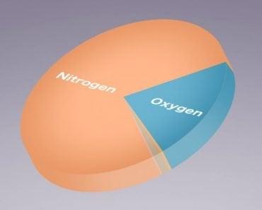 Gases nitrogen oxygen