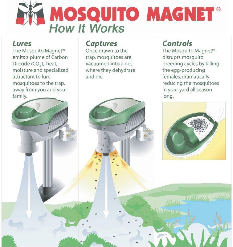 Mozquito magnet