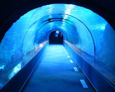 underwater tunnel