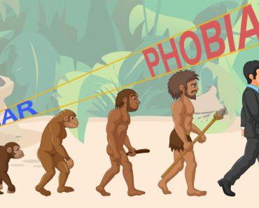 Evolution fear to phobia