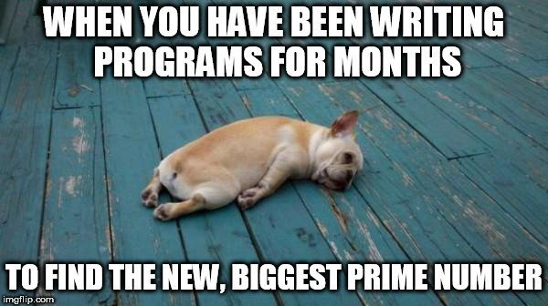 WHEN YOU HAVE BEEN WRITING PROGRAM FOR MONTH meme