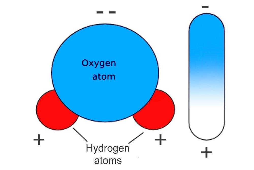 water molecule dipole