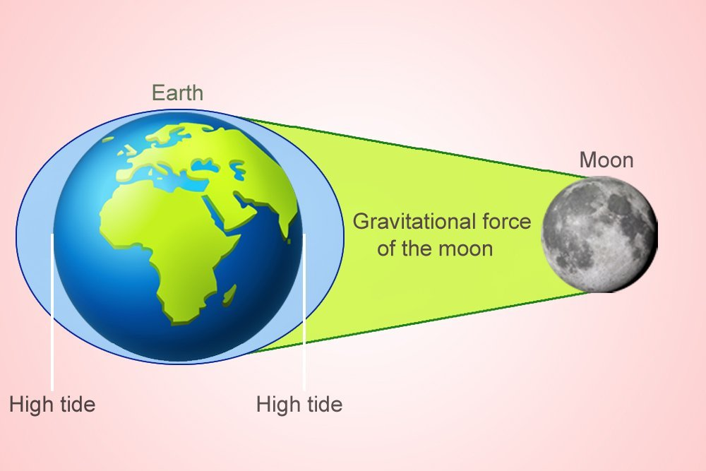 Tides Caused By Gravitational Force Moon Stock Vector ...