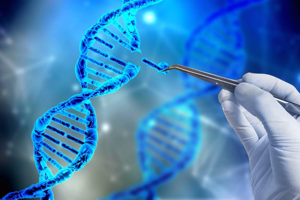 CRISPR, DNA