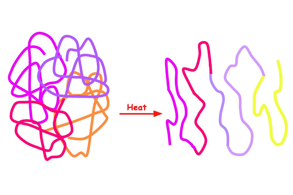 denaturing of the protein